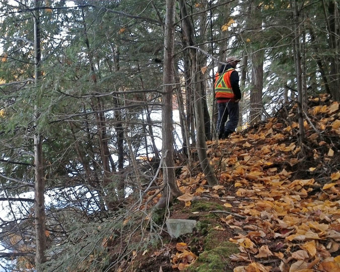Wildland Fire Assessments Muskoka